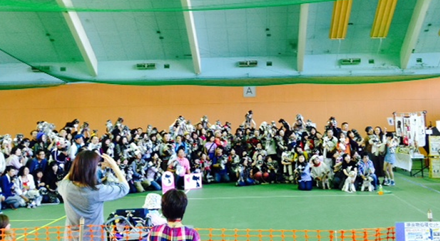 【ミニチュアシュナウザーLOVERS2014】に参加してきました。