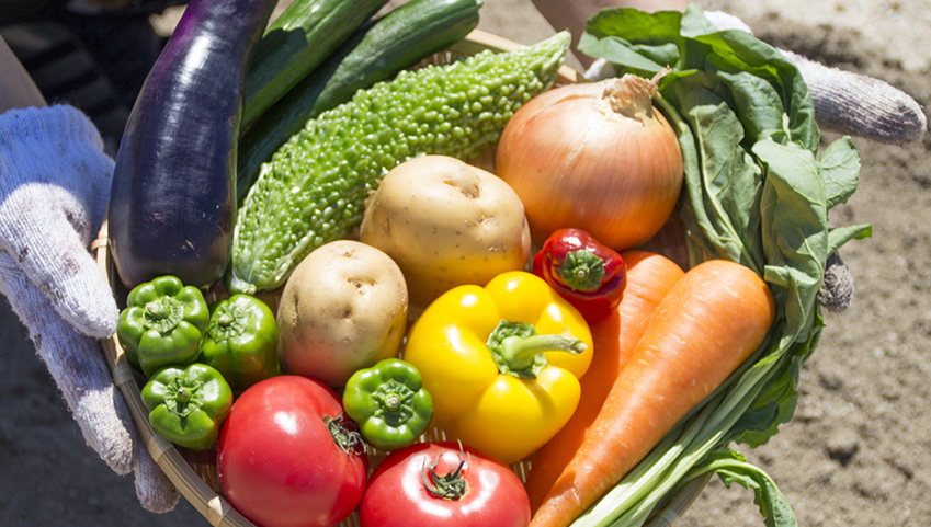 腸に良い食べ物「果物や野菜を丸ごと食べた方がいい理由」サルベストロールと腸の関係
