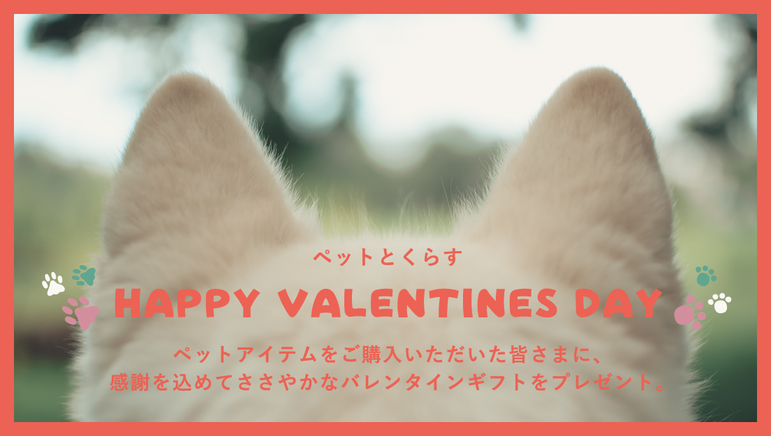 ペットアイテムをご購入頂いた皆さまへ感謝を込めて。ペットとくらすバレンタインギフトキャンペーン!